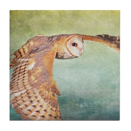 Barn Owl Tile Coaster