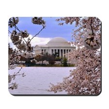 Thomas Jefferson Memorial 3 square Mousepad