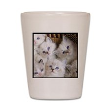 Cup o Kittens round Shot Glass