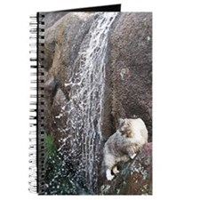 Cat in a Waterfall C Journal