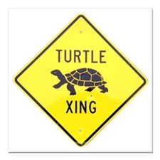 "Turtle Crossing Square Car Magnet 3"" x 3"""