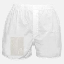 Cat in a Waterfall ins Boxer Shorts