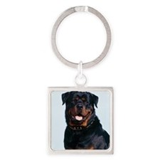 Rottweiler Square Keychain