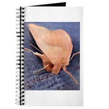 Moth Journal