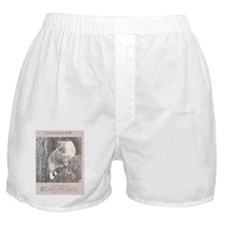 Cat in a Waterfall back Boxer Shorts