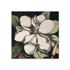 "Vintage Magnolia Square Sticker 3"" x 3"""