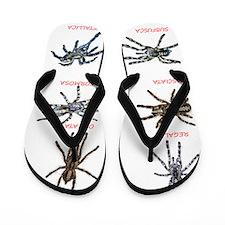 poecilotheria Flip Flops