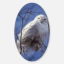 Snowy White Owl Sticker (Oval)