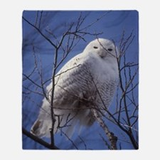 Snowy Owl - White Bird against a Sap Throw Blanket