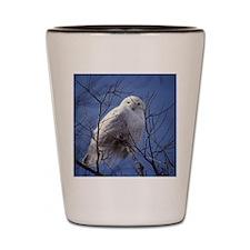 Snowy White Owl Shot Glass