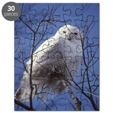 Snowy White Owl Puzzle