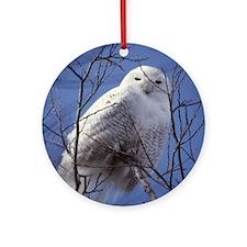 Snowy White Owl Round Ornament