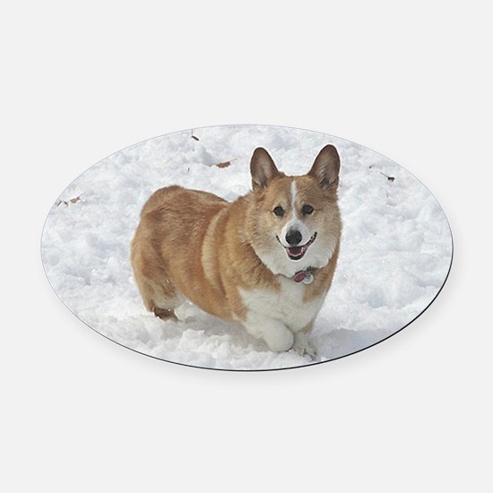 Red and White Corgi in the Snow Oval Car Magnet