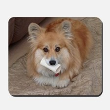 Corgi with a bone Mousepad