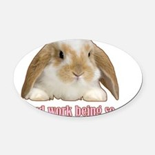 Its hard work being so cute Oval Car Magnet