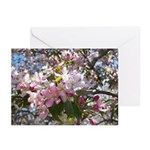 Flowering Cherry Tree Greeting Cards (Pk of 10)