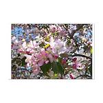 Flowering Cherry Tree Mini Poster Print