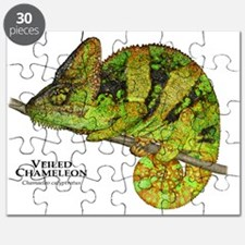 Veiled Chameleon Puzzle