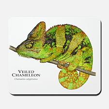 Veiled Chameleon Mousepad