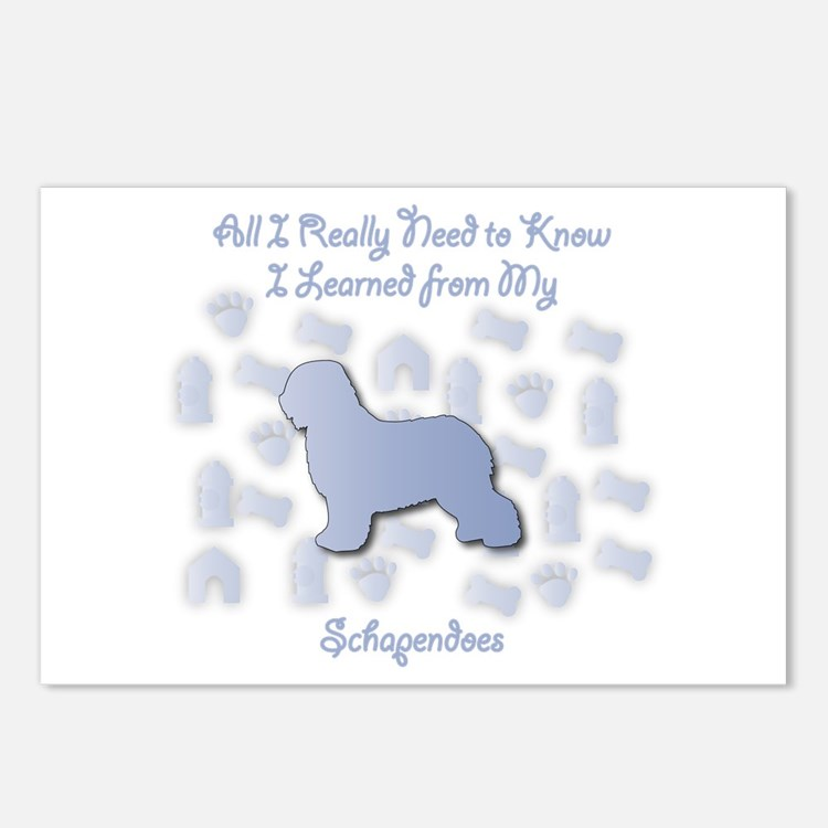 Learned Schapendoes Postcards (Package of 8)