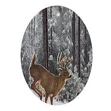 Winter Majesty Journal Oval Ornament