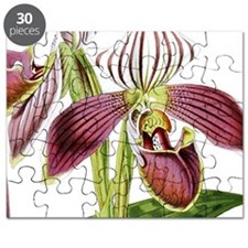 Lady Slipper Orchid Puzzle