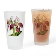 Lady Slipper Orchid Drinking Glass