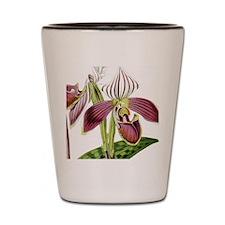 Lady Slipper Orchid Shot Glass
