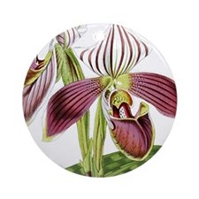 Lady Slipper Orchid Round Ornament
