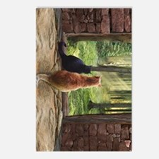 Doorway into Forever nv Postcards (Package of 8)