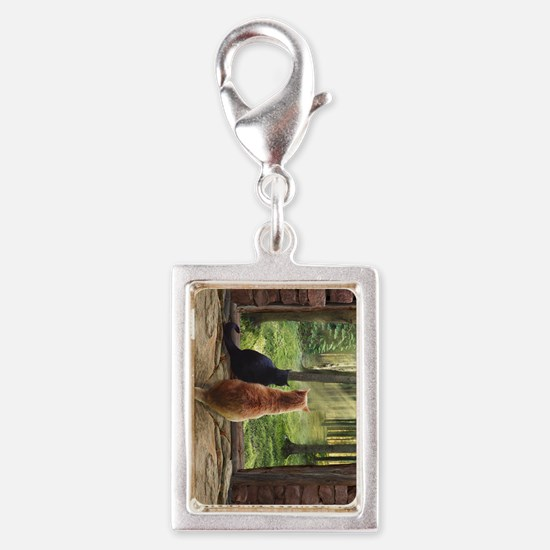 Doorway into Forever nv Silver Portrait Charm