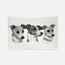 Cute Italian greyhound Rectangle Magnet (100 pack)