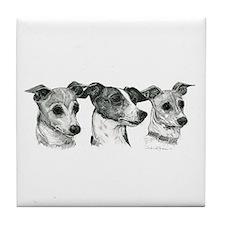 Funny Italian greyhound Tile Coaster