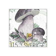 "1978 Sweden Porcino Mushroo Square Sticker 3"" x 3"""