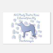 Learned Norrbottenspets Postcards (Package of 8)