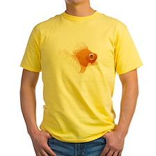 shirt1 T