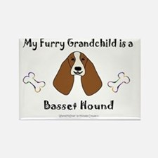 basset hound Rectangle Magnet