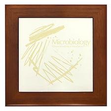 Microbiology Framed Tile