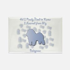 Learned Bolognese Rectangle Magnet (100 pack)