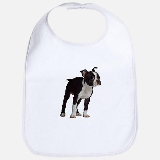 Boston Terrier Puppy Baby Bib