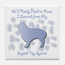 Learned Spaniel Tile Coaster