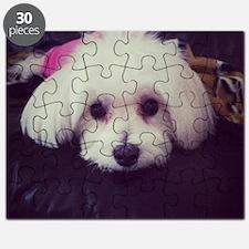 Sadie 2 Puzzle