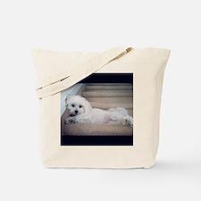 Sadie 5 Tote Bag