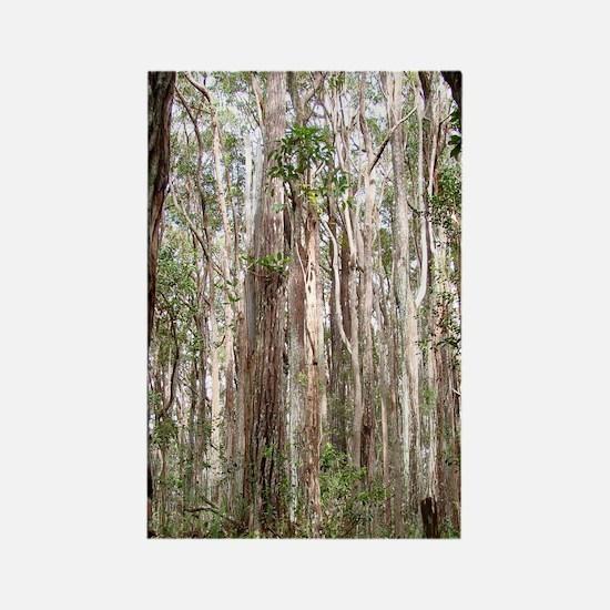 Molokai Forest Rectangle Magnet