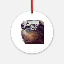 million dollar sloth Round Ornament