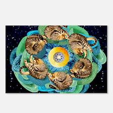 Cosmic Cats C horiz lt Postcards (Package of 8)