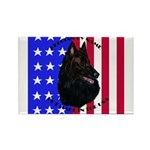 Belgian Sheepdog & Flag Rectangle Magnet (100 pack