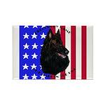 Belgian Sheepdog & Flag Rectangle Magnet