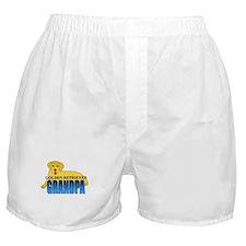 Golden Retriever Grandpa Boxer Shorts
