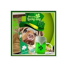 "Bulldogs Lucky St. Patricks Square Sticker 3"" x 3"""